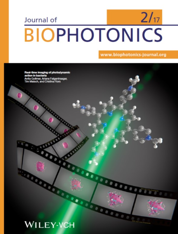 This cover illustrates that bacterial death induced by the combination of light and a photosensitizer can be followed in real time by advanced fluorescence microscopy. This allows extracting information about the mechanisms of photodynamic action of these drugs. This work is the outcome of a collaboration with Regensburg University Hospital in Germany.