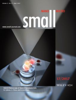 Our work on hybrid nanoscopy of amyloid-like fibers, in collaboration with the University of Granada, recently appeared as the front cover of Small.