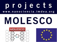 MOLESCO Molecular-Scale Electronics: Concepts, Contacts And Stability