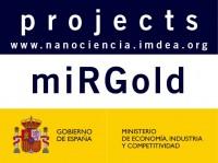miRGold Diseño Y Evaluacion De Agentes Terapeuticos Y Sensores Basados En Arns No Codificantes Y Nanoestructuras