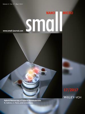 Hybrid Nanoscopy of Hybrid Nanomaterials